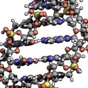 Banca dati DNA: diventa legge