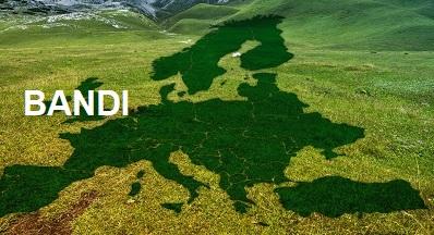 """Economia sociale e """"green deal"""" locali per PMI più resilienti"""